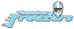 Hamburg Freezers gegen Grizzly Adams Wolfsburg